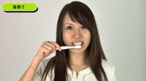 歯モデル㈰